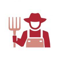 Pictos Facts & Figures RED_Potato Farmer